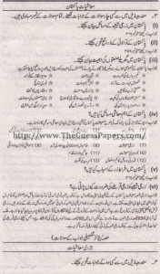 Mashiyat Solved Past Paper 1st year 2013 Karachi Board5