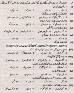 Tarekh-e-Aam Solved Past Paper 1st year 2013 Karachi Board
