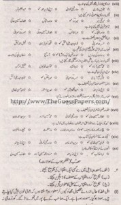 Urdu Solved Past Paper 1st year 2013 Karachi Board1