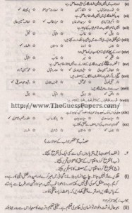 Urdu (ikhteyare) Solved Past Paper 1st year 2011 Karachi Board1